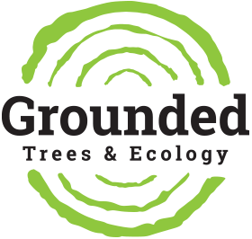 Grounded Trees